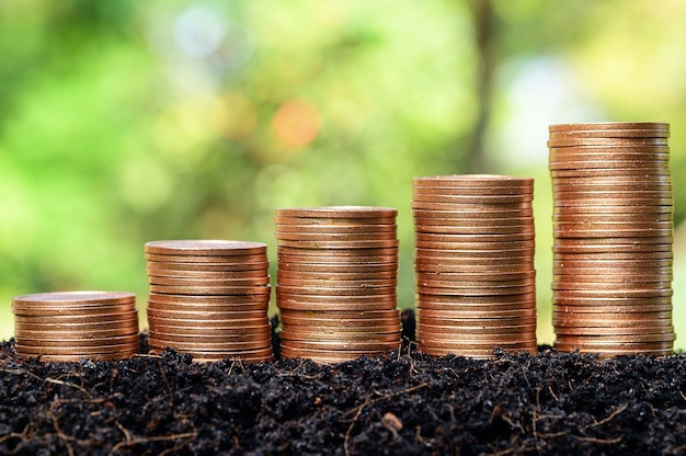 Geld munt stapel groeiende grafiek met zon licht bokeh achtergrond, investeringen concept. bedrijfsfinanciën en geld besparen concept