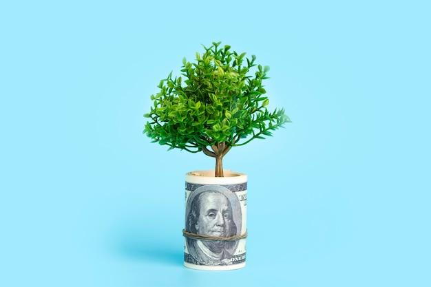 Geldboom op een blauwe achtergrond groeiende boom uit de amerikaanse dollar economie en geld concept