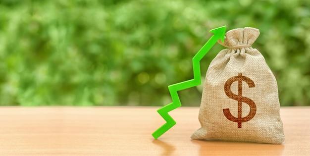 Geldzak met dollarteken en groene pijl-omhoog. verhoog winst en rijkdom. groei van de lonen