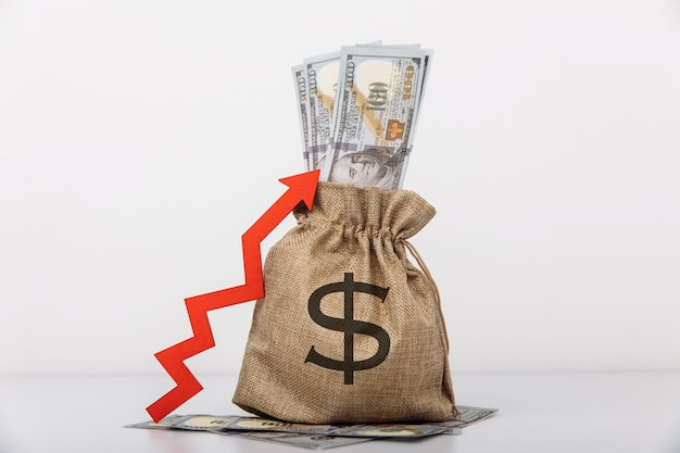 Geldzak met dollarteken en rode pijl omhoog instroom van investeringen en kapitaalverhoging van rijkdom