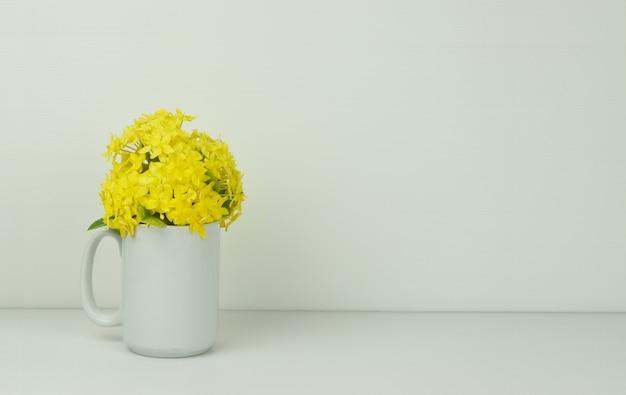 Gele aarbloemen in een vaas op wit.