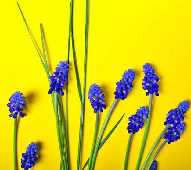 Gele achtergrond met blauwe bloemen
