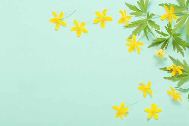 Gele anemoon op groenboekoppervlak