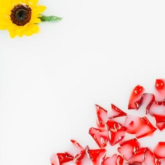Gele bloem en rode bloemblaadjes die op water drijven