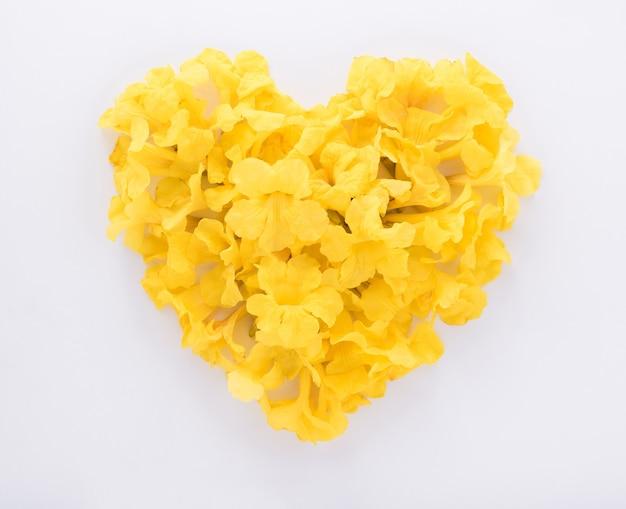 Gele bloemen in hartvorm geïsoleerd
