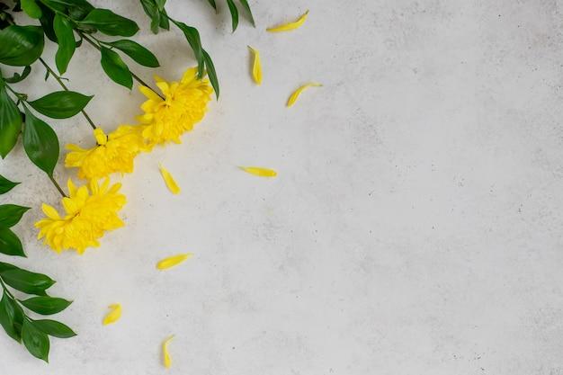 Gele bloemen met bloemblaadjes op een witte betonnen ondergrond,