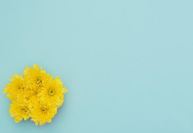 Gele bloemen op blauw