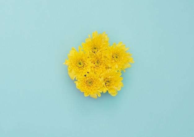 Gele bloemen op blauwe achtergrond. plat lag stijl