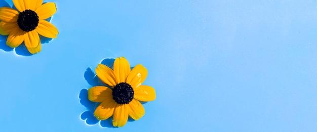 Gele bloemen op een blauwe waterachtergrond onder natuurlijk licht. bovenaanzicht, plat gelegd. banier.
