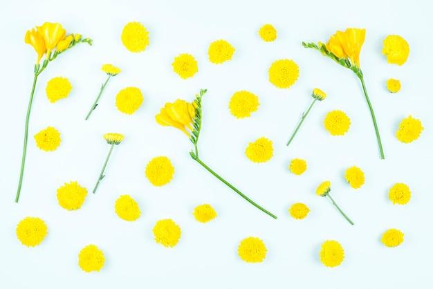 Gele bloemen op witte achtergrond