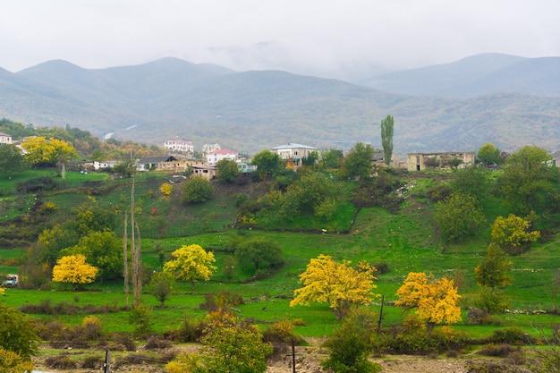 Gele bomen op een groene weide in het dorp
