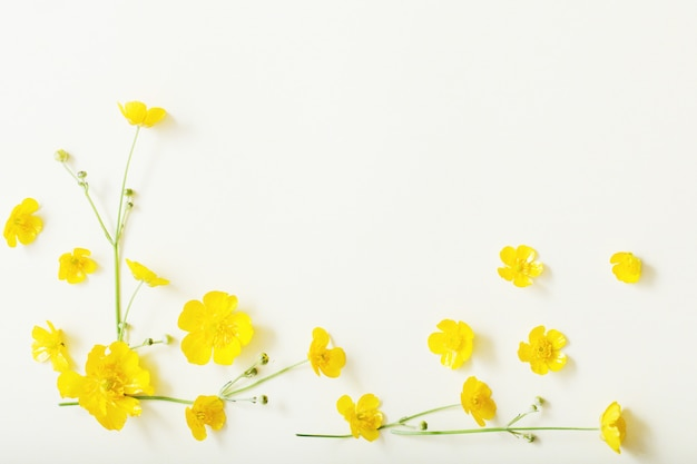 Gele boterbloemen op wit oppervlak