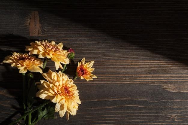 Gele chrysant in hard zonlicht