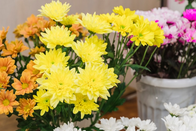 Gele chrysantenbloemen in de emmer