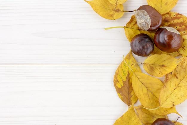 Gele de herfstbladeren en kastanje op een witte houten achtergrond met copyspace