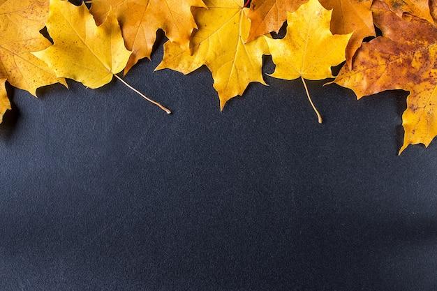 Gele de herfstbladeren op zwart bord