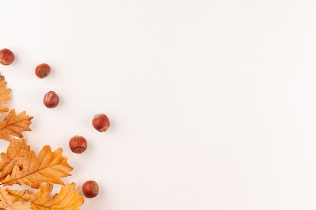 Gele eikenbladeren en hazelnoten