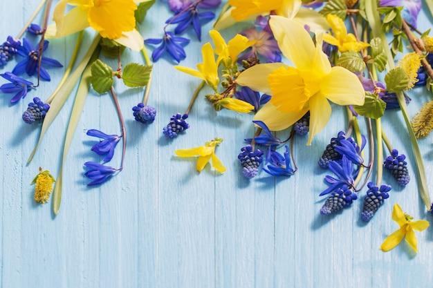 Gele en blauwe lentebloemen op houten achtergrond