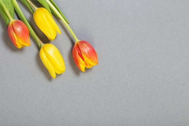 Gele en oranje tulpen op grijze achtergrond