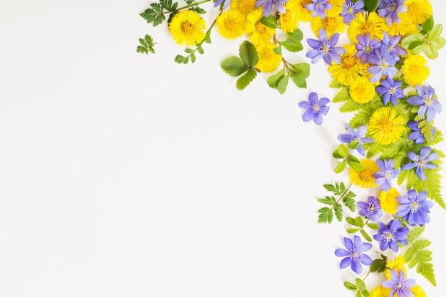 Gele en paarse lentebloemen op papier achtergrond