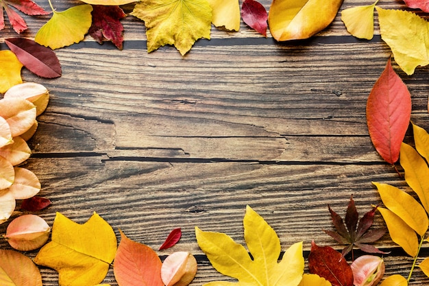 Gele en rode bladeren op bruine houten achtergrond. seizoenssamenstelling, herfst, thanksgiving day, herbarium concept. mockup, sjabloon, overhead