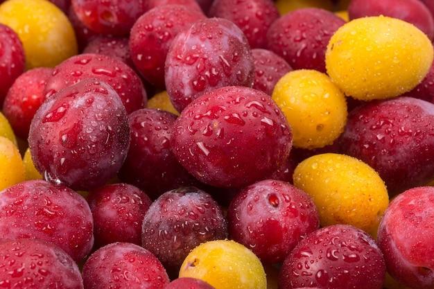 Gele en rode pruimen in druppeltjes water