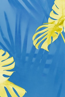 Gele monstera en palmschaduwbladeren op blauwe achtergrond