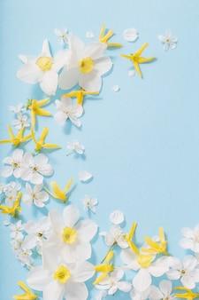 Gele narcissen en kersenbloemen op blauwe achtergrond als achtergrond