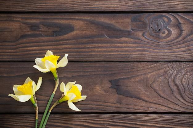 Gele narcissen op donkere houten achtergrond