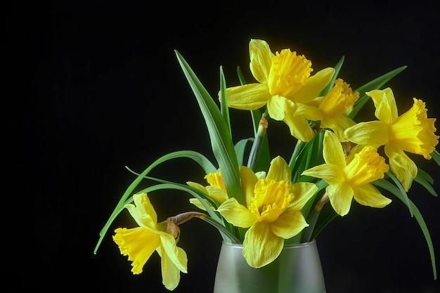 Gele narcissenbloem in een glasvaas met water