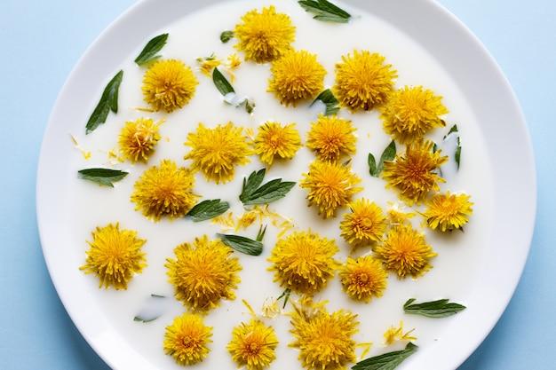 Gele paardebloembloemen die in witte melk op een vlakke plaat drijven