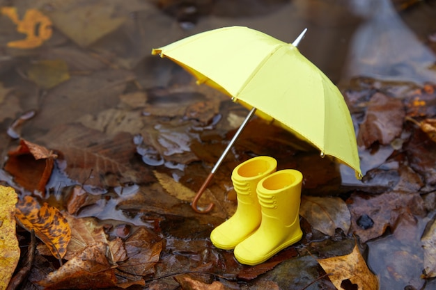 Gele paraplu en rubberen laarzen in een poddle met herfstbladeren