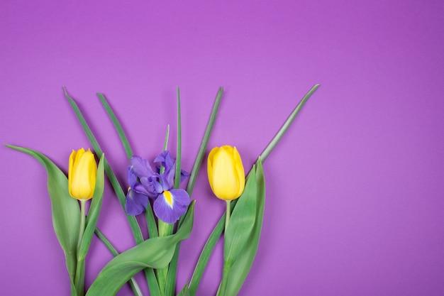Gele tulpen en een paarse iris bloem