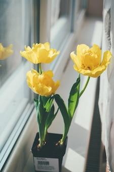 Gele tulpen in een bloempot op de vensterbank.
