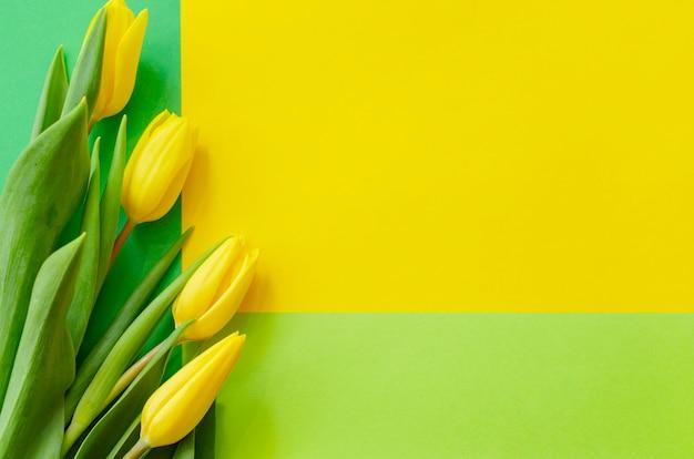 Gele tulpen op een geometrische geelgroen