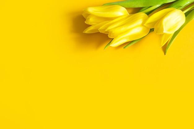 Gele tulpen op een oranje achtergrond.
