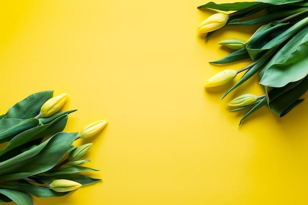 Gele tulpen op gele achtergrond