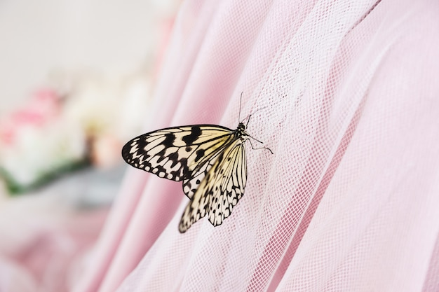 Gele vlinder op een roze chiffon jurk