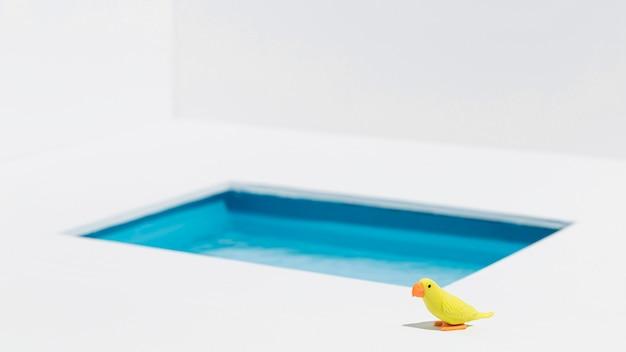 Gele vogel naast zwembad