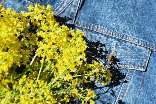 Gele wilde bloemen in spijkerjasje, kopieerruimte zomerstemming