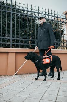 Geleidehond helpt blinde man in de stad.