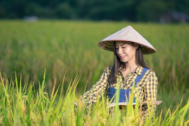 Gelukkig aziatisch wijfje schrijf notities in rijstvelden
