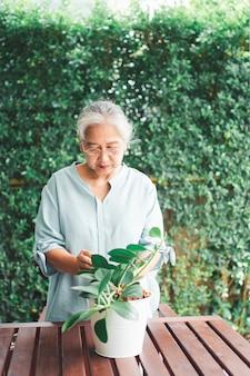 Gelukkig en glimlachende aziatische oude bejaarde die bloem in pot plant