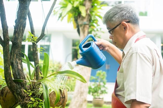 Gelukkig en lachende aziatische oude oudere man is planten water geven