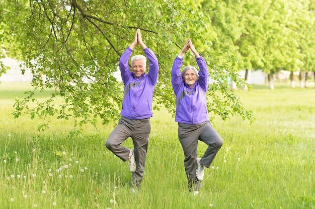 Gelukkig fit senior koppel dat yoga beoefent in het park