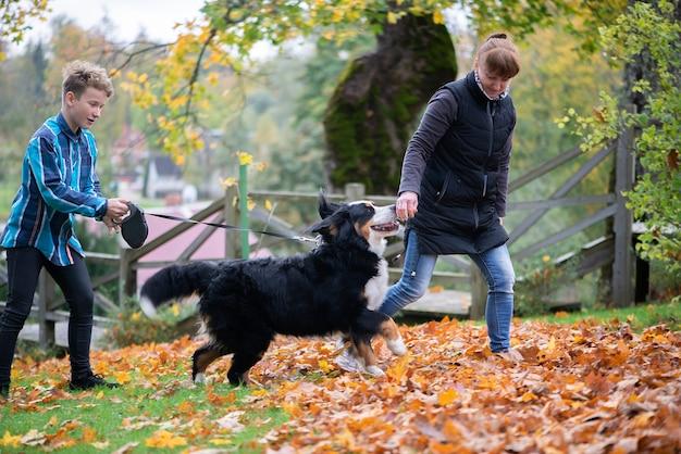 Gelukkig gezin-moeder en zoon tiener wandelen met berner sennenhond in herfst park