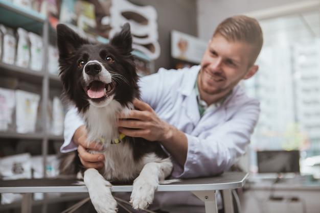 Gelukkig gezonde hond wordt onderzocht door professionele dierenarts