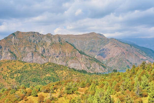 Gelukkig internationaal bergdaglandschap