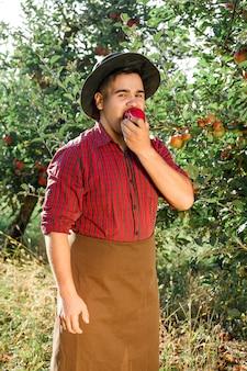 Gelukkig jongeman in de tuin verzamelen van rijpe appels