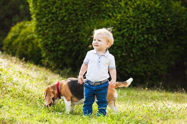 Gelukkig jongetje wandelen met zijn beagle hond in het park